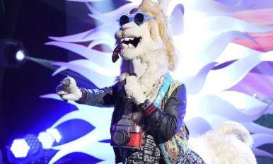 maksed-singer