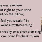 Taylor Swift Willow 90's Remix Lyrics